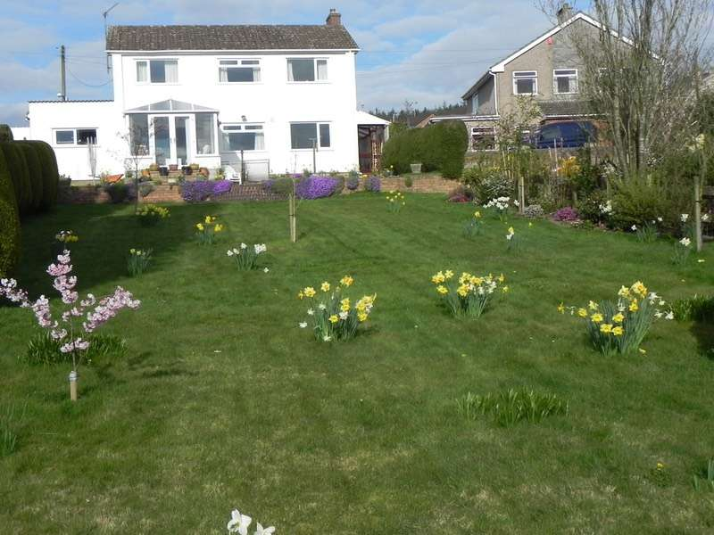 3 Bedrooms Detached House for sale in Trinity Road Harrow Hill, Drybrook, Gloucestershire, GL17