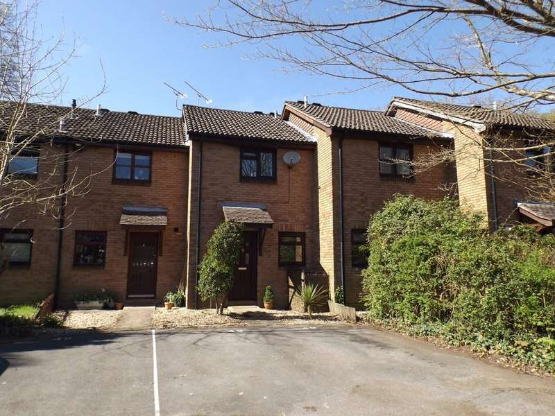 2 Bedrooms Terraced House for sale in Cygnus Gardens, Dibden