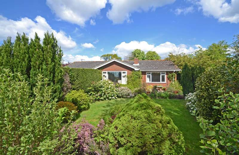 3 Bedrooms Detached Bungalow for sale in Old London Road, Coldwaltham, Pulborough, West Sussex, RH20