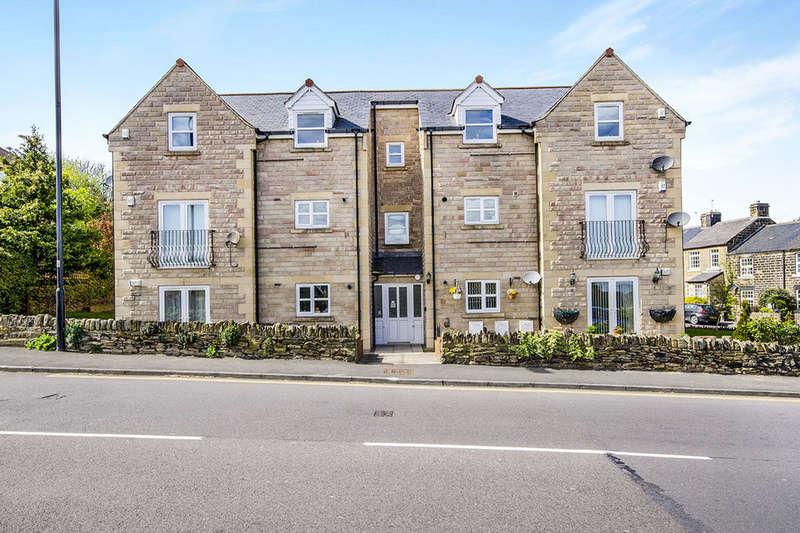 2 Bedrooms Flat for sale in Hallwood Rise, Chapeltown, Sheffield, S35