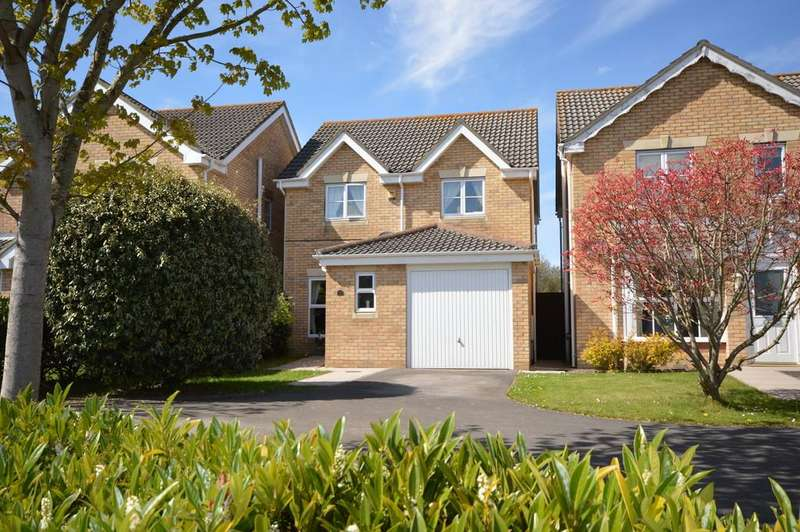 3 Bedrooms Detached House for sale in Earlswood Park, Ashley