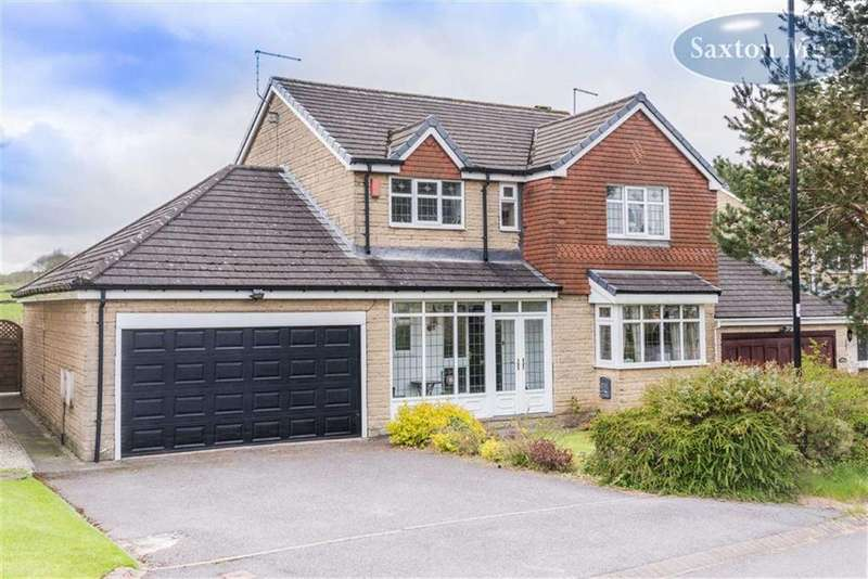 4 Bedrooms Detached House for sale in The Pines, Lodge Moor, Sheffield, S10