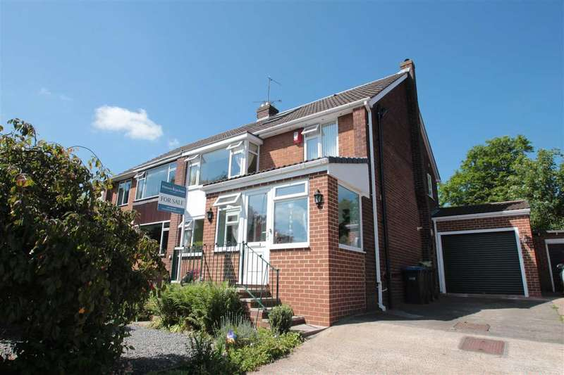 3 Bedrooms Semi Detached House for sale in Hermitage Park, Chester-le-Street, County Durham