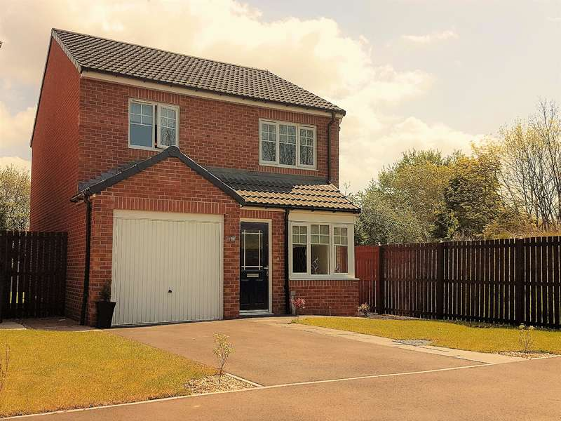 3 Bedrooms Detached House for sale in Baron Close, Stainsby Hall Park, Middlesbrough, TS5 8FH