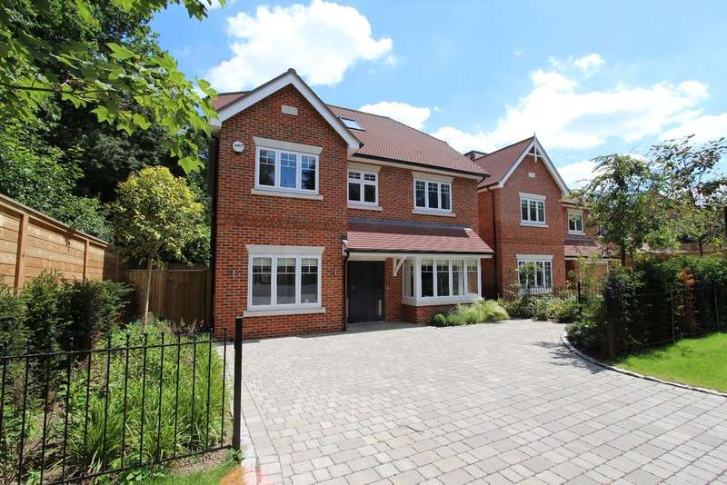 5 Bedrooms Detached House for sale in Kingston Upon Thames