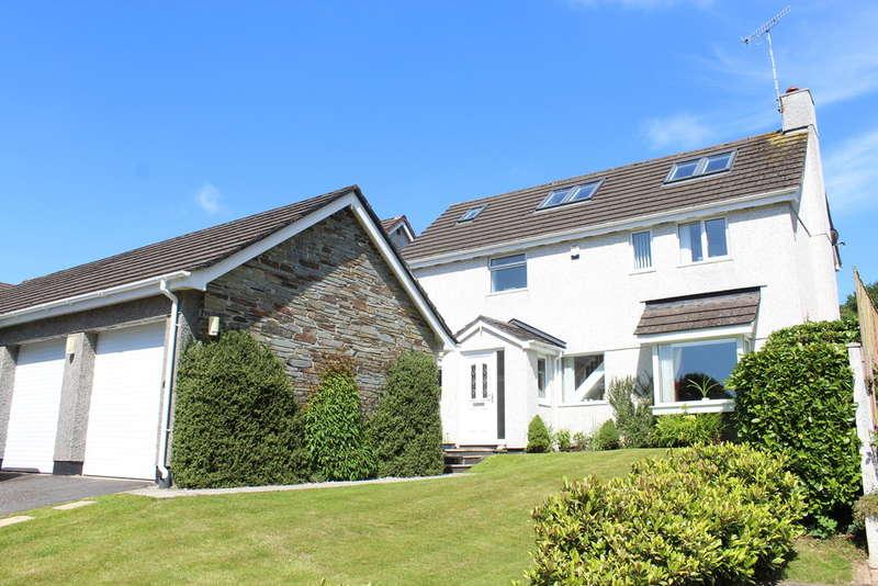 4 Bedrooms Detached House for sale in Wood Park, Ivybridge