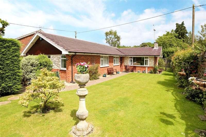 4 Bedrooms Detached Bungalow for sale in Back Lane, Bucks Horn Oak, Farnham, Hampshire, GU10