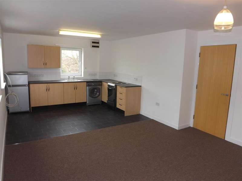 2 Bedrooms Apartment Flat for sale in Upper Parliament Street, Liverpool