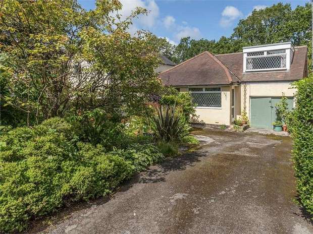 3 Bedrooms Detached Bungalow for sale in Quarry Road, Totley Rise, Sheffield, South Yorkshire