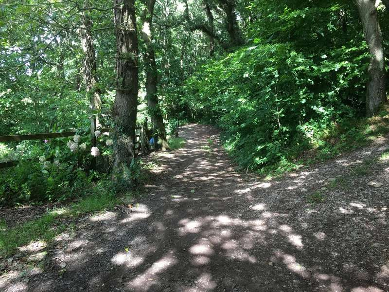 Land Commercial for sale in Land at Court Wood, Newton Ferrers