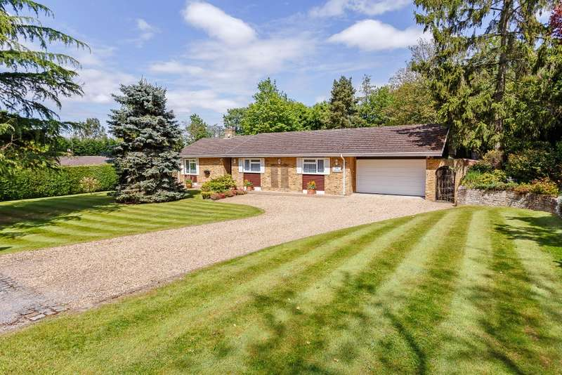 4 Bedrooms Detached Bungalow for sale in Mayford