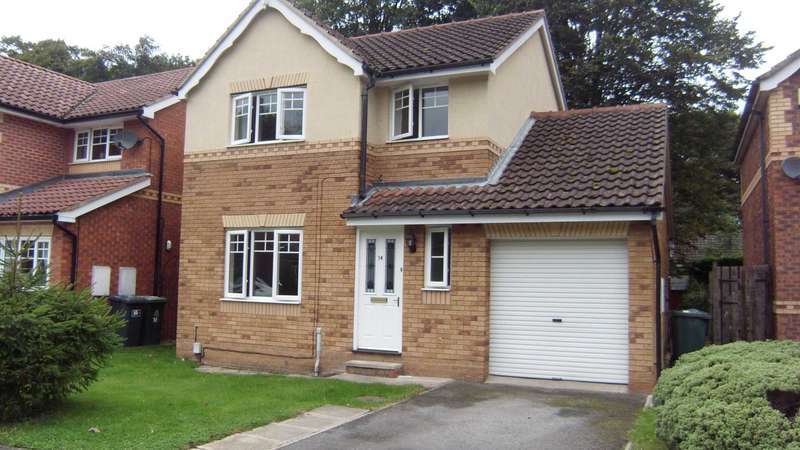 3 Bedrooms Detached House for rent in Millwater Avenue, Dewsbury