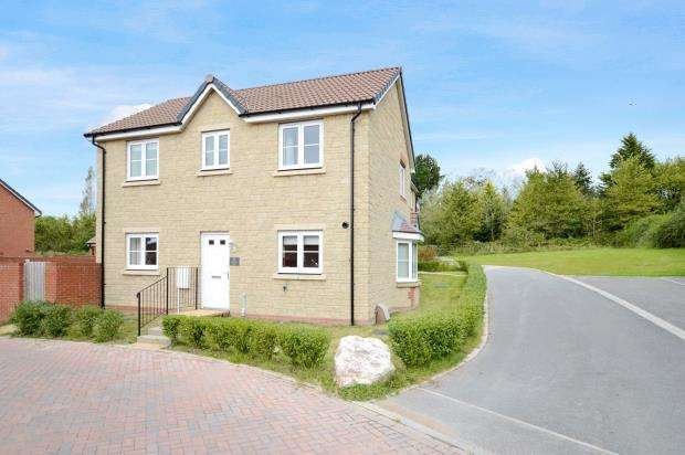 3 Bedrooms Detached House for sale in Larkspur Drive, Newton Abbot, Devon