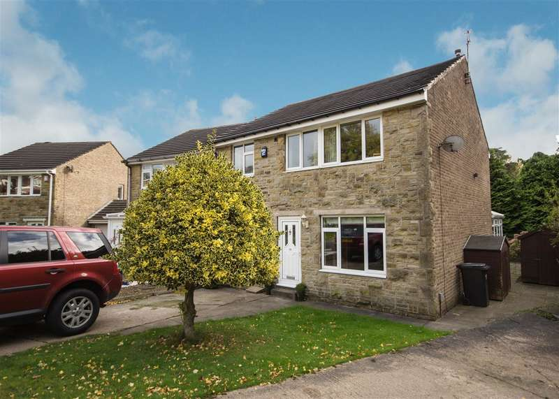 4 Bedrooms Detached House for sale in Central Park, Well Head, Halifax