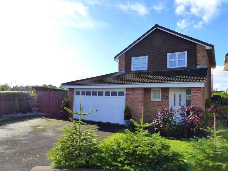 3 Bedrooms Detached House for sale in Wintour Close, The Danes, Chepstow