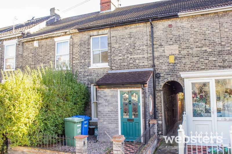 3 Bedrooms Terraced House for sale in Connaught Road, Norwich NR2