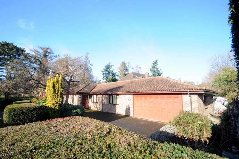 3 Bedrooms Detached Bungalow for sale in Busbridge