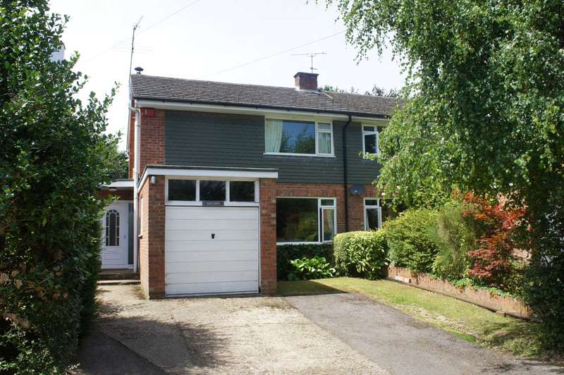 3 Bedrooms Semi Detached House for sale in Tokers Green Lane, Tokers Green