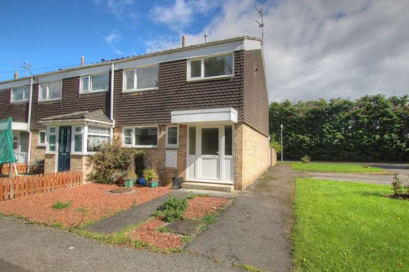 3 Bedrooms Semi Detached House for sale in Beech Close, Brasside, Durham, DH1
