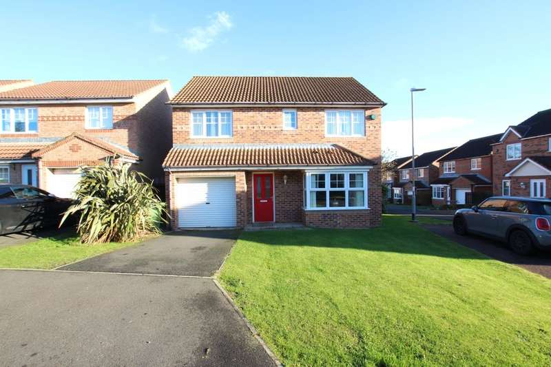 4 Bedrooms Detached House for sale in West Meadows, Chopwell, Newcastle Upon Tyne, NE17