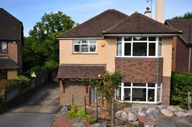 4 Bedrooms Detached House for sale in Elkins Grove, Hazell Road, Farnham