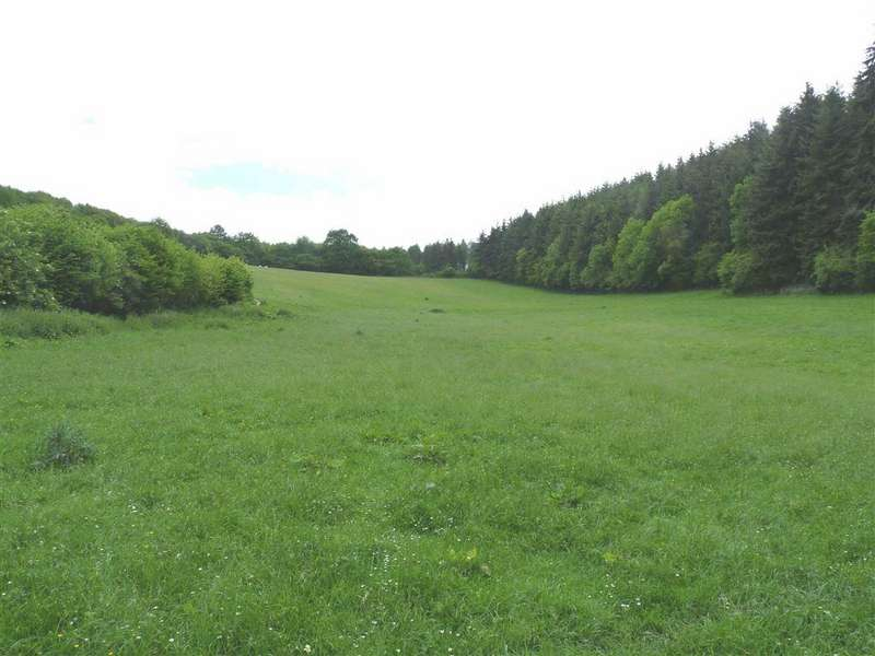 Land Commercial for sale in Upper Dormington, Hereford
