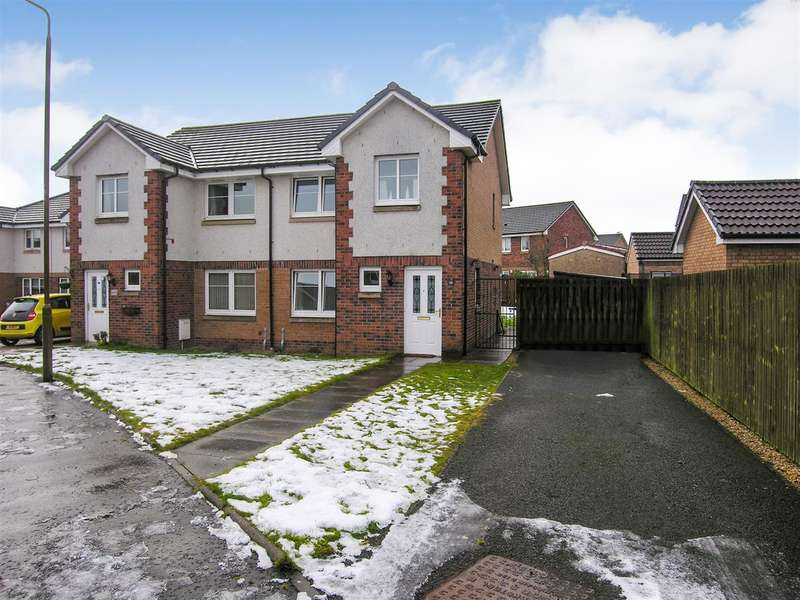 3 Bedrooms Semi Detached House for sale in Stevenson Court, Bainsford