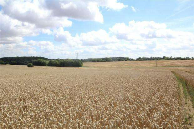 Land Commercial for sale in Little Sampford, Saffron Walden, Essex