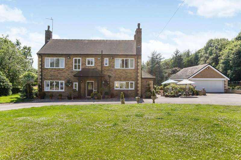 4 Bedrooms Detached House for sale in Barley Croft, Hoodhill, S35