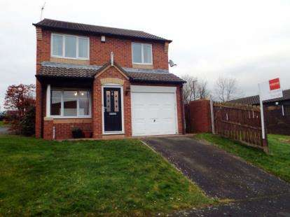 3 Bedrooms Detached House for sale in Shunner Close, Washington, Tyne and Wear, NE37