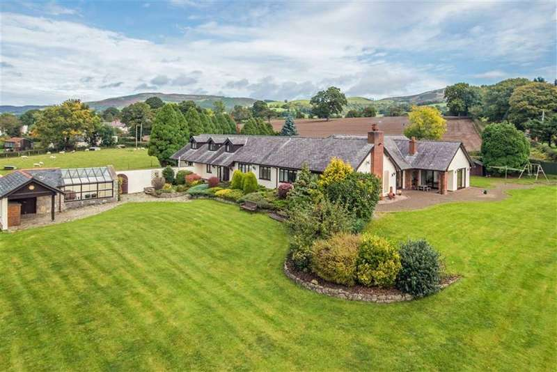 5 Bedrooms Detached Bungalow for sale in Ffordd Las, Llandyrnog, Denbigh