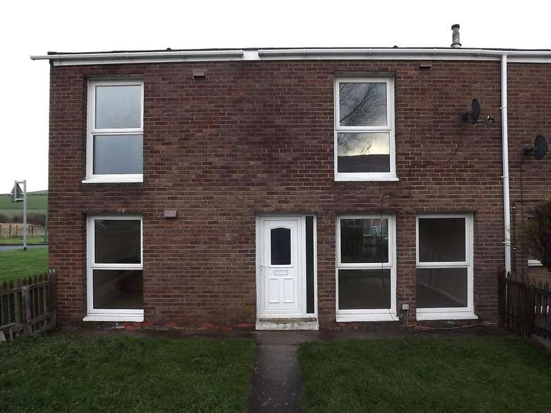 3 Bedrooms End Of Terrace House for sale in Briardene, Esh Winning, Durham, DH7