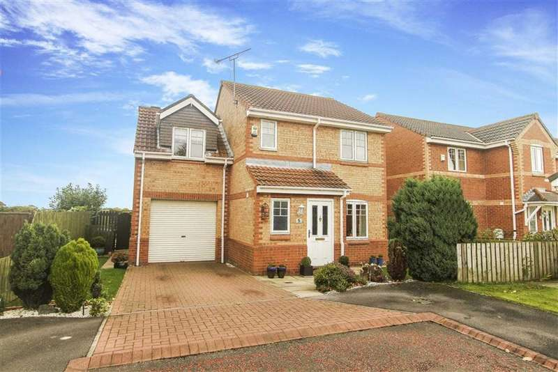 3 Bedrooms Detached House for sale in The Paddock, Seaton Delaval, Tyne And Wear