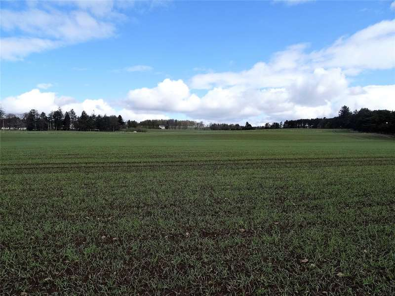 Farm Commercial for sale in Lot 1, Land At Noranside, Fern, Forfar, Angus, DD8