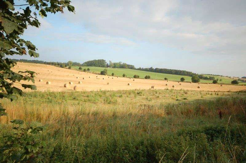 Land Commercial for sale in Building Plot East, Appletreehall, HAWICK, TD9