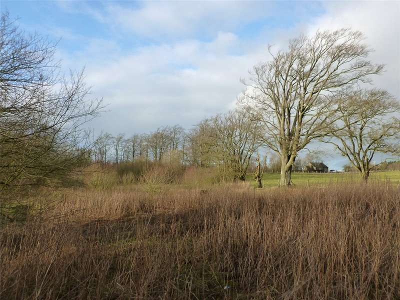 Land Commercial for sale in Plot 1 At Springfield, Cleghorn, Lanark, South Lanarkshire, ML11
