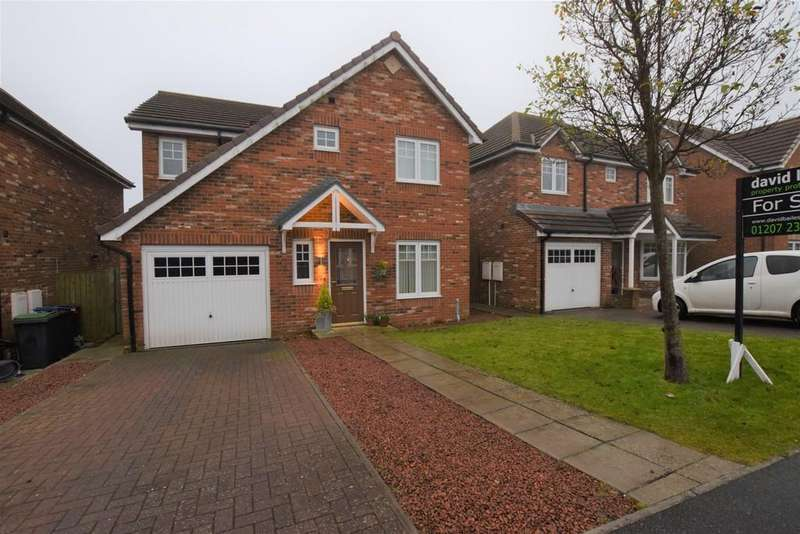 4 Bedrooms Detached House for sale in Tyne Vale, Stanley, Co. Durham