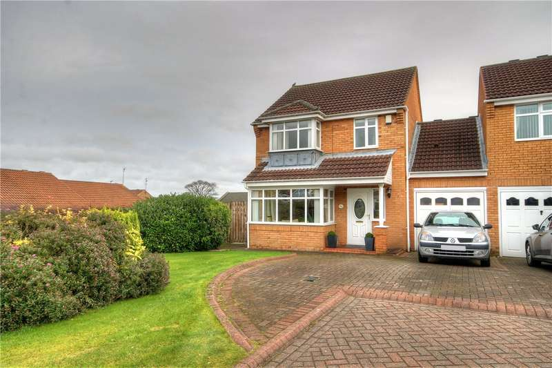 3 Bedrooms Detached House for sale in Castle Riggs, Chester le Street, Co Durham, DH2