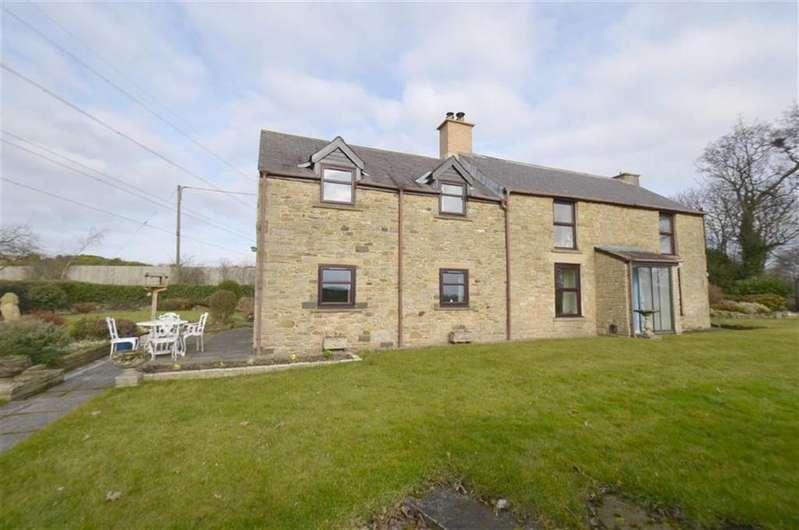 4 Bedrooms Detached House for sale in Blaydon