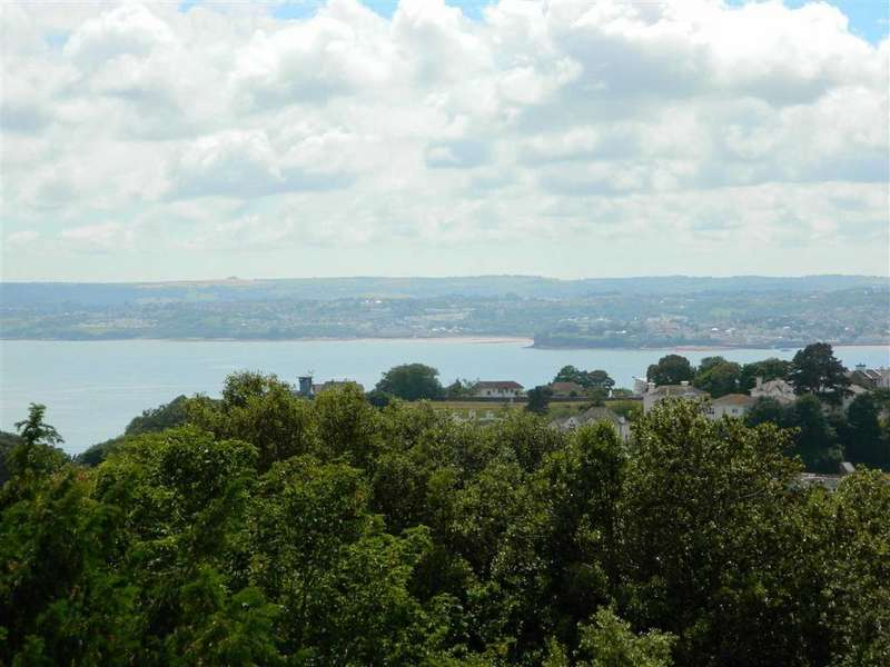 2 Bedrooms Apartment Flat for sale in Middle Lincombe Road, Torquay, Devon, TQ1