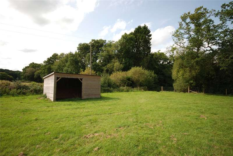Land Commercial for sale in Godshill, Fordingbridge, Hampshire, SP6