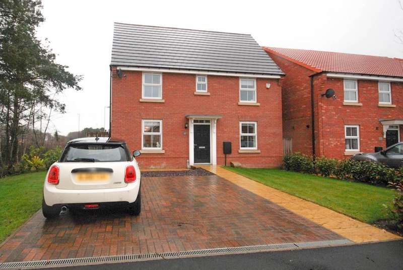 3 Bedrooms Detached House for sale in Wettonmill Close, Washington