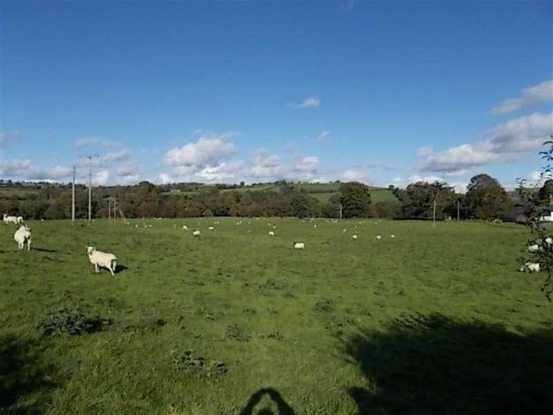 Farm Land Commercial for sale in Swn Yr Afon Land, Llangadfan, Welshpool, Powys, SY21
