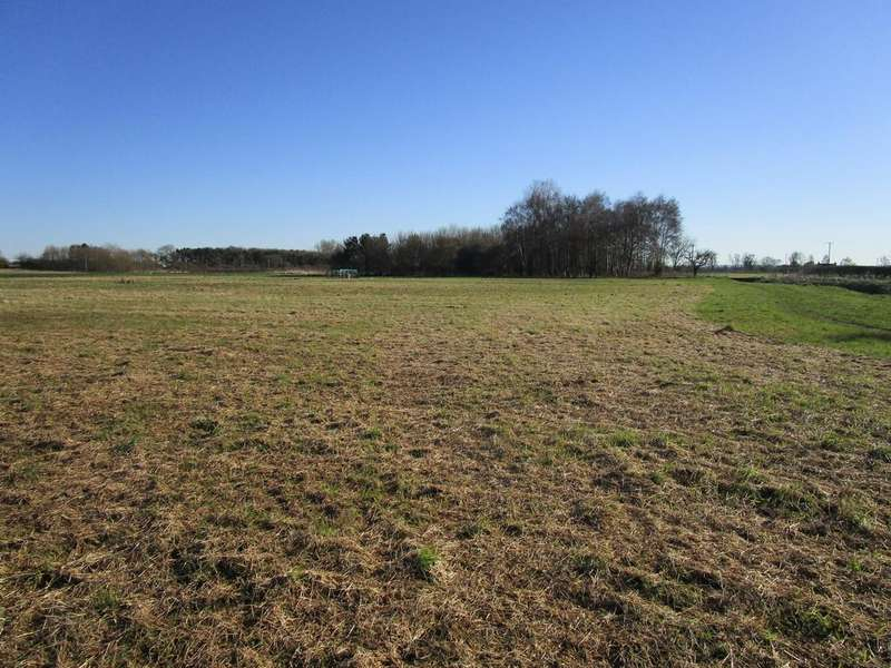 Land Commercial for sale in Land and Woodland for Sale at Waddingham