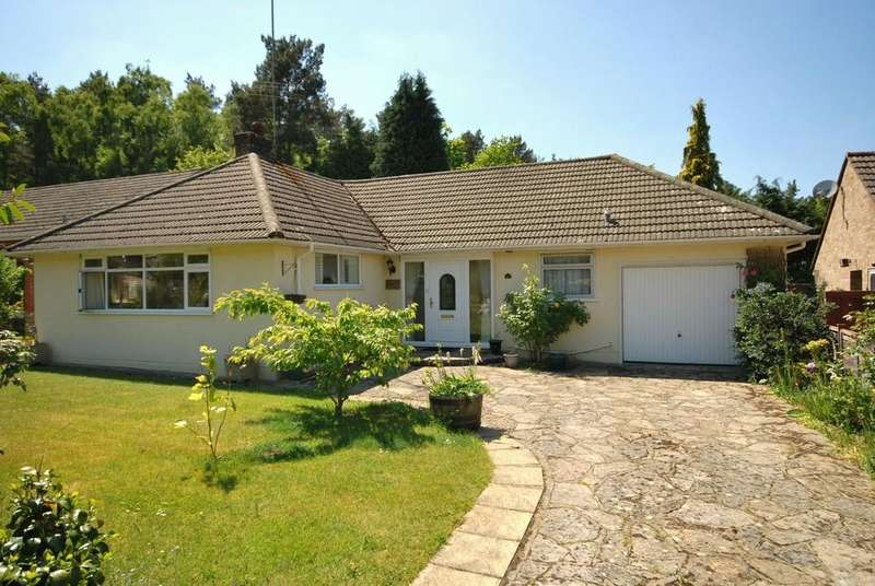 2 Bedrooms Detached Bungalow for rent in Vale Close, Lower Bourne