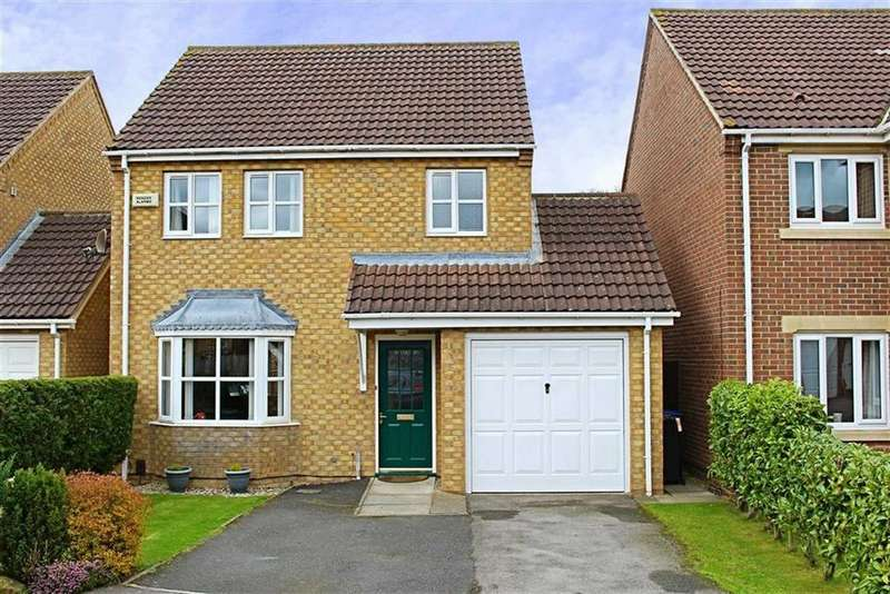 3 Bedrooms Detached House for sale in Hawkstone, Marton