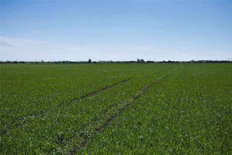 Farm Commercial for sale in Cock Fen Farm, Lakes End, Wisbech, PE14