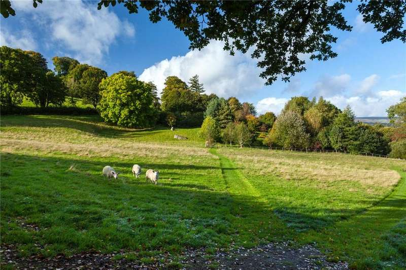 Land Commercial for sale in Chagford, Newton Abbot, Devon