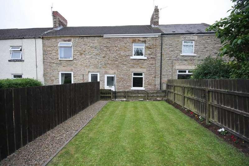 3 Bedrooms Terraced House for sale in Poplar Street, Waldridge Village, Chester-le-Street DH2 3SE