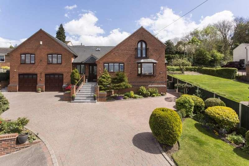 4 Bedrooms Detached House for sale in Elder Lane, Griffydam, LE67